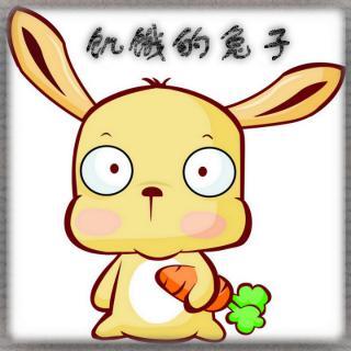 微信头像小动物兔子