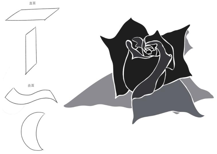 点的构成花瓣设计图展示图片