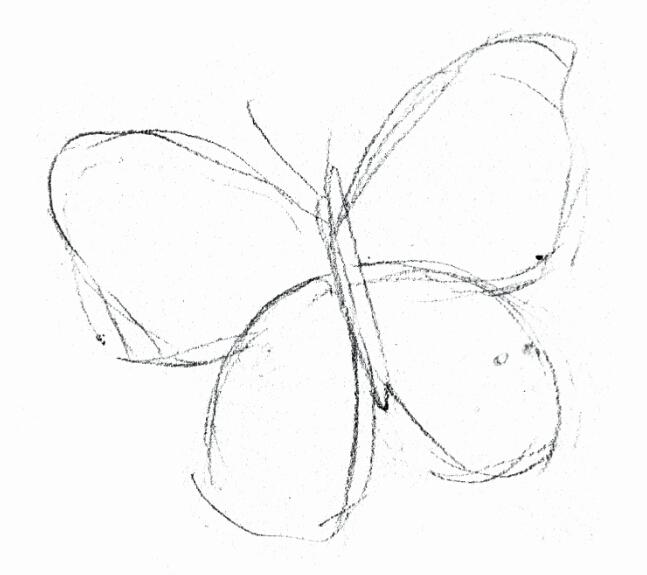 铅笔画出蝴蝶的形状