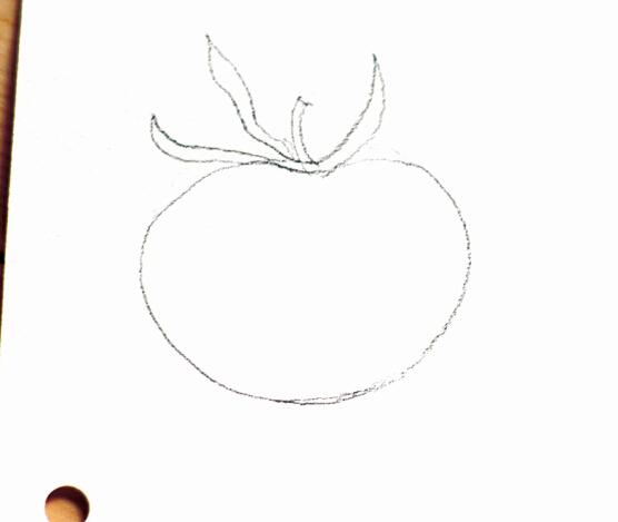 绘画步骤 1.打好铅笔稿